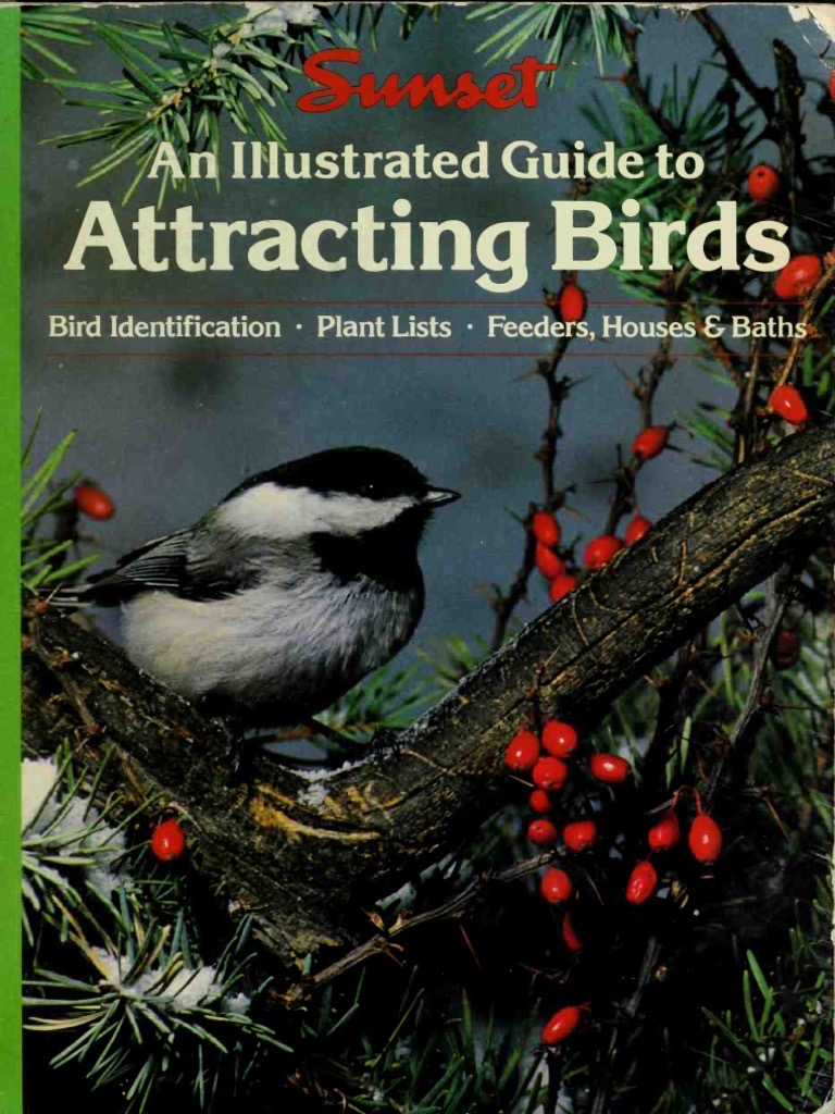 An Illustrated Guide To Attracting Birds _ SUNSET BOOKS AND MAGAZINE