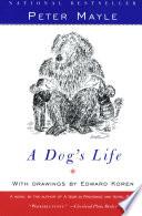 A Dogs Life _ EDWARD KOREN