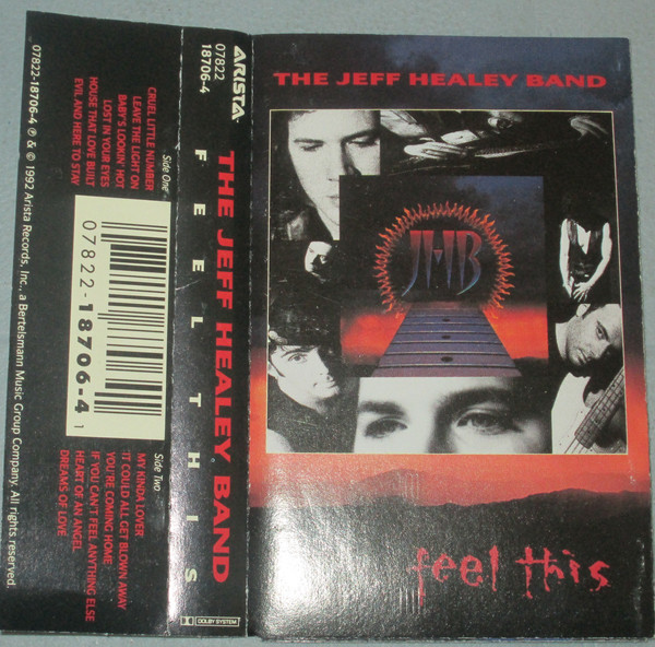 THE JEFF HEALEY BAND_Feel This