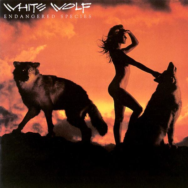 WHITE WOLF_Endangered Species