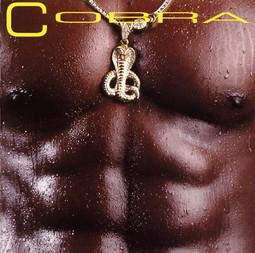 COBRA_S/T _Sealed_