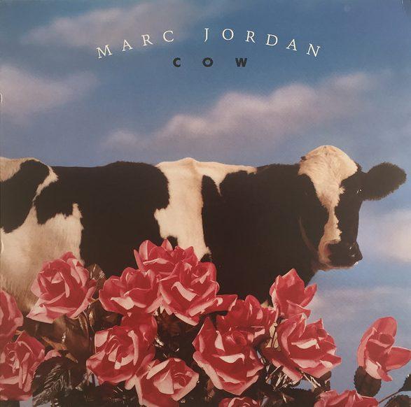 MARC JORDAN_Cow