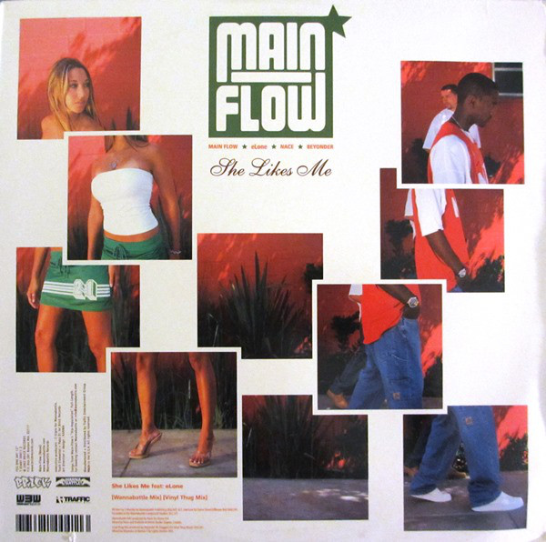 MAIN FLOW_She Likes Me / The Wire
