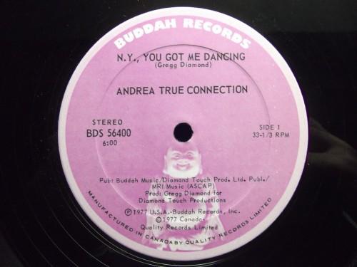 ANDREA TRUE CONNECTION_N.y.