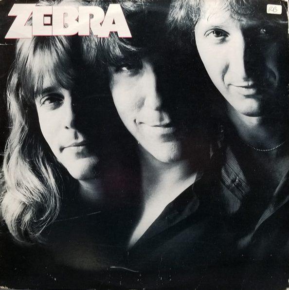 ZEBRA_Zebra